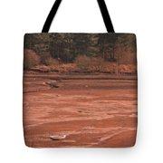 Dry Reservoir  Tote Bag