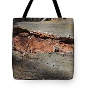 Dry Rotting Tree Tote Bag