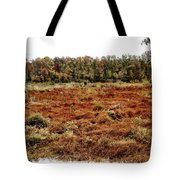 Dry Swamp Tote Bag