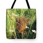 Dry Thistle Tote Bag