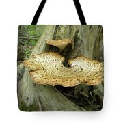 Dryads Saddle Bracket Fungi - Polyporus Squamosus Tote Bag