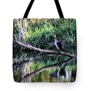 drying cormorant- Black bird sitting on log over water Tote Bag