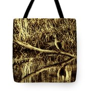 drying cormorant BW- Black bird sitting on log over water Tote Bag