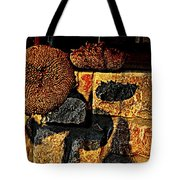Drying Out Tote Bag by Chris Berry