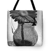 Dsc0184d1-001 Tote Bag