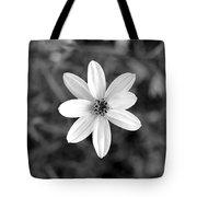 Dsc508d1-003 Tote Bag