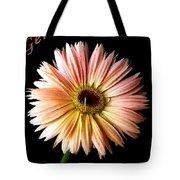 Dscn6163a Tote Bag