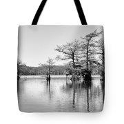 Duck Blind On Caddo Lake Tote Bag