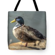 Duck By Pond Tote Bag