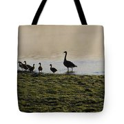 Duck Family Panorama Tote Bag by Bill Cannon
