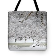 Duck Fly Over Herons On Maumee River Tote Bag