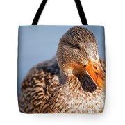 Duck In Water Tote Bag