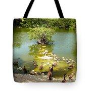 Duck Island Tote Bag
