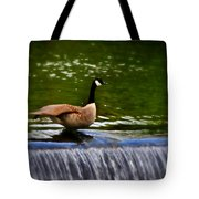 Duck On The River Wye Waterfall - In Bakewell Peak District - England Tote Bag