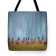 Duck Reflections Tote Bag