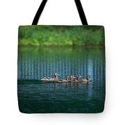 Duck Slide Tote Bag