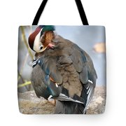 Duck Tails At The Buffalo Zoo Tote Bag