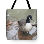 Duck Wading In A Stream Tote Bag