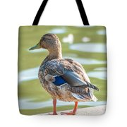 Duckling By The Lake  Tote Bag