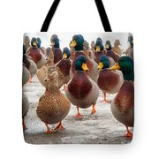 Duckorama Tote Bag by Bob Orsillo