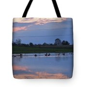Ducks And Geese At Sunset Tote Bag