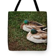 Ducks At Rest Tote Bag