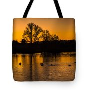 Ducks At Sunrise On Golden Lake Nature Fine Photography Print  Tote Bag