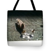 Ducks At The American Indian Museum Tote Bag
