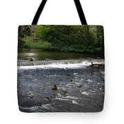Ducks Enjoying The Open Air Tote Bag