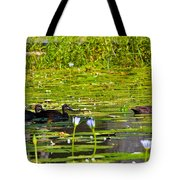 Ducks In Lily Pond Tote Bag