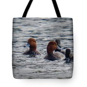 Ducks In Pond Tote Bag