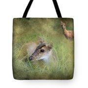 Duiker Endangered Antelope Tote Bag