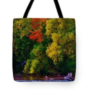 Dundee Dam Tote Bag