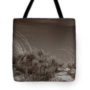 Dune And Blue Sky Tote Bag
