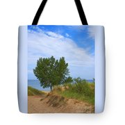 Dune - Indiana Lakeshore Tote Bag