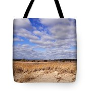 Dune Grass And Clouds Tote Bag