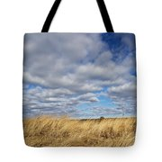 Dune Grass And Sky Tote Bag