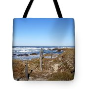 Dune Grass Tote Bag by Barbara Snyder