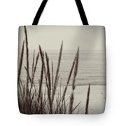 Dune Grass In Early Spring Tote Bag