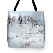 Dune Trees And Snow Tote Bag