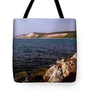 Dunes North Of Frankfort Michigan Tote Bag
