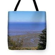Dungeness Harbor Tote Bag