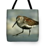 Dunlin On The Hunt Tote Bag