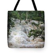 Dunns River Falls 2 Tote Bag