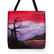 Dusk Tote Bag by Anastasiya Malakhova