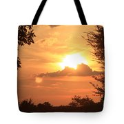 Dusk In The Trees Tote Bag