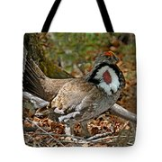 Dusky Grouse Cock Tote Bag