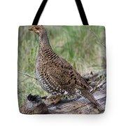Dusky Grouse Dendragapus Obscurus Hen Tote Bag