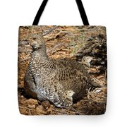 Dusky Grouse With Chicks Tote Bag