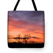 Dust Bunnies At Sundown Tote Bag